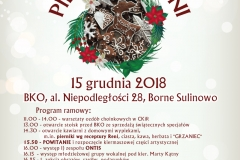 Kiemasz Reni